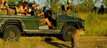 Tailor Made Safaris Drakensberg Royal Natal National Park