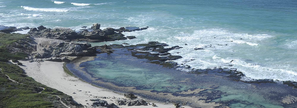 tailor made safaris - de hoop nature reserve