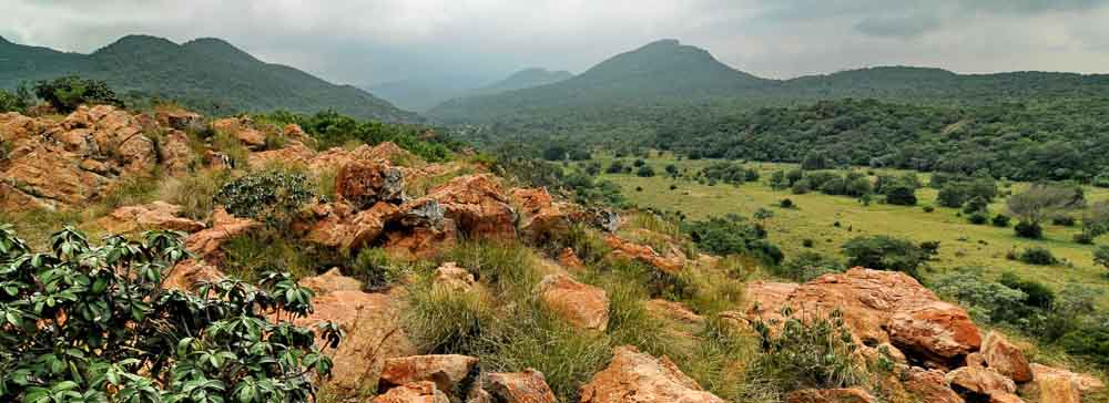 tailor made safaris - Soutpansberg